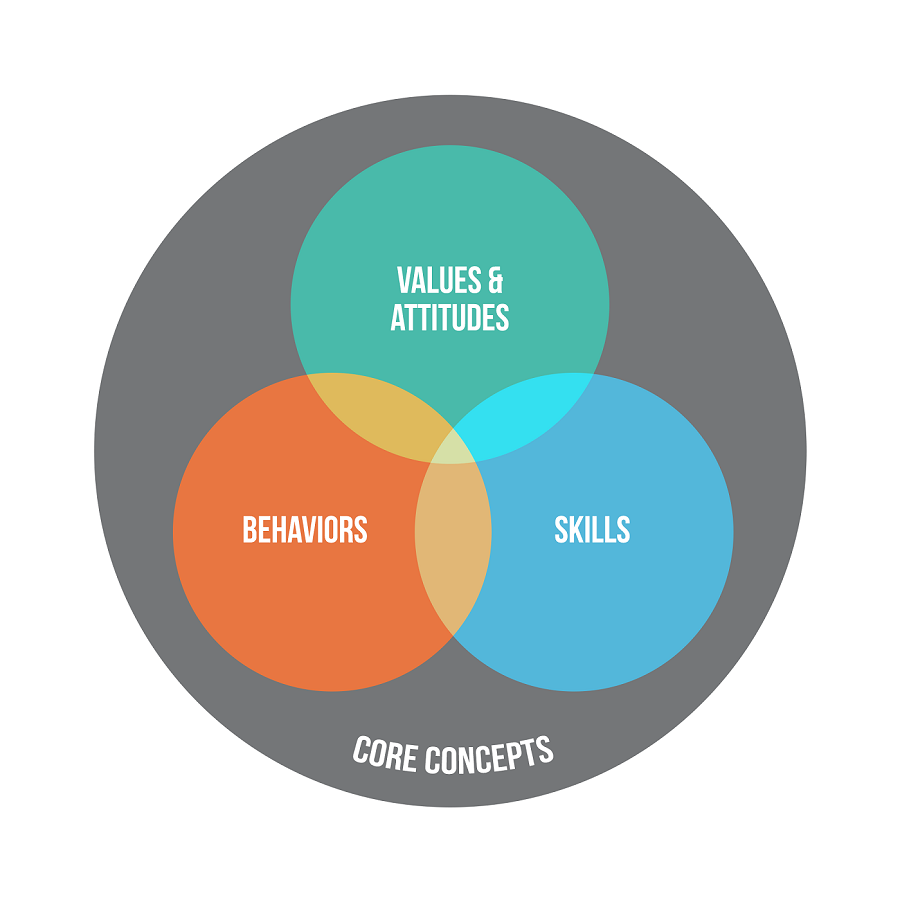 Effect of Skill Library—a Global Way of Skills Matrix for Better Talent Administration